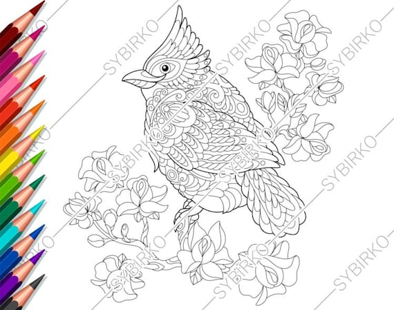 Coloring pages for adults. Red Cardinal Bird. Adult coloring