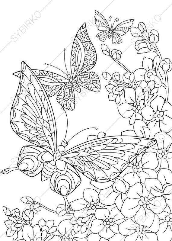 Butterfly and Spring Flowers 3 Coloring Pages Animal Etsy