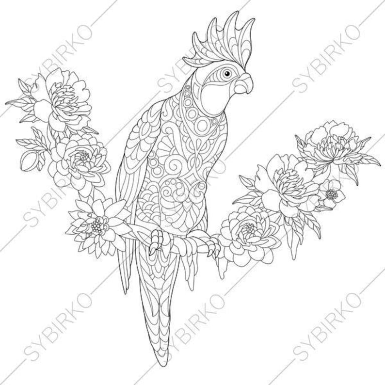 Cockatoo Parrot  Coloring Page  Animal coloring book pages for Adults   Instant Download Print