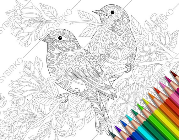 Coloring pages for adults. Lovely Birds Couple. Spring