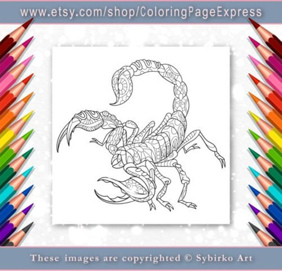 coloring page for adults digital coloring page scorpion etsy etsy