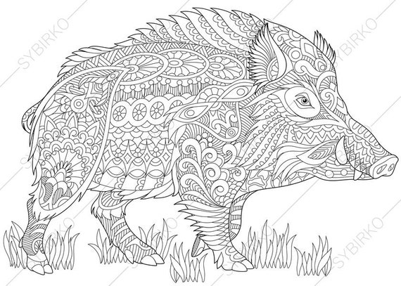 Wild Boar 2 Coloring Pages Animal Coloring Book Pages For Etsy