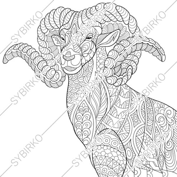 Goat coloring page - Animals Town - animals color sheet - Goat ... | 570x570