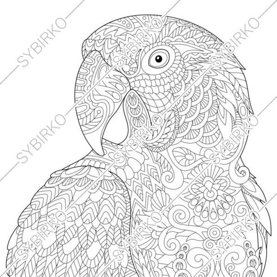 Macaw Coloring Page - Coloring Home   570x570