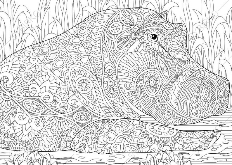 Hippo. Hippopotamus. 2 Coloring Pages. Animal coloring book | Etsy
