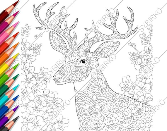 Coloring Pages For Adults Deer Flowers Adult Coloring Etsy