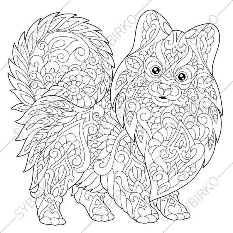 Coloring Pages for adults. Pomeranian Spitz. Terrier Dog. | Etsy