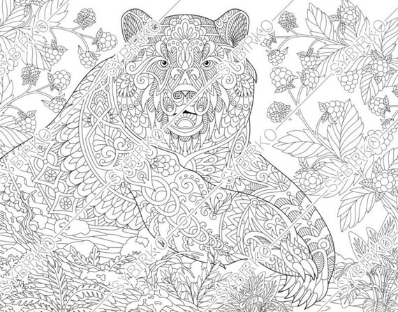 coloring pages of a grizzly bear – coursity.me | 448x570