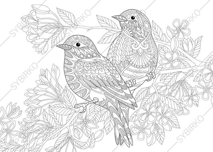 - Spring Birds And Flowers Coloring Pages