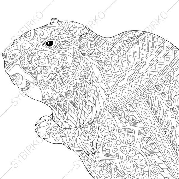 Groundhog coloring page for groundhog day greeting cards m4hsunfo