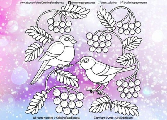 Winter Owl coloring page | Free Printable Coloring Pages | 408x570