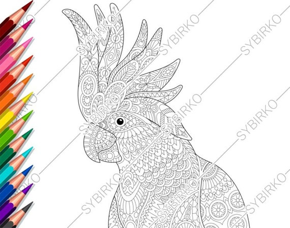 12 Best Free Printable Bird Coloring Pages For Kids | 449x570