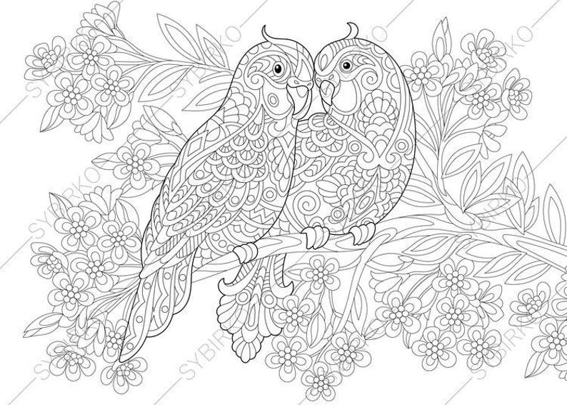 Coloring pages  Budgie Parrots  Birds in Love  Happy Valentines Day  greeting card idea  Animal coloring book for adults  Instant Download