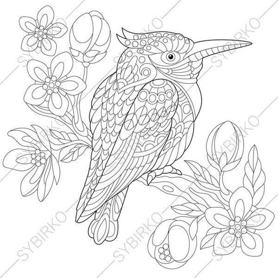 Australian Kingfisher. Coloring Page. Animal | Etsy