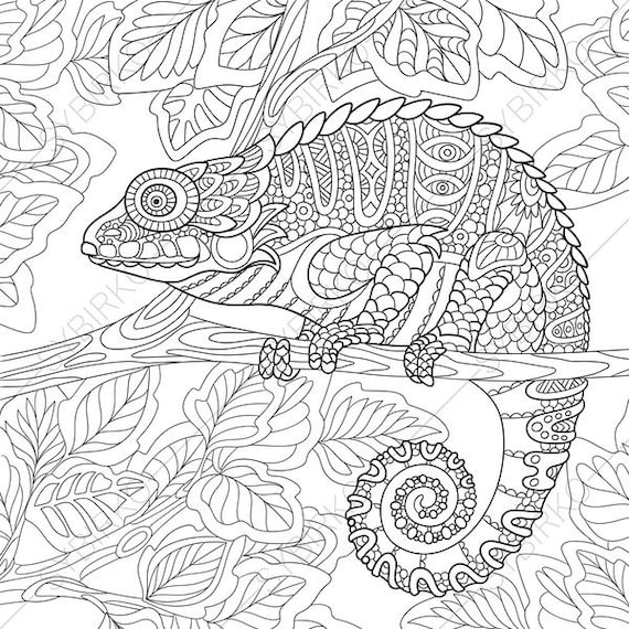 Chameleon Lizard. 2 Coloring Pages. Animal coloring book pages   Etsy