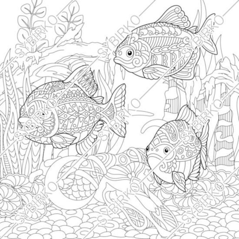 Coloring Pages For Adults Piranhas River Fishes Adult