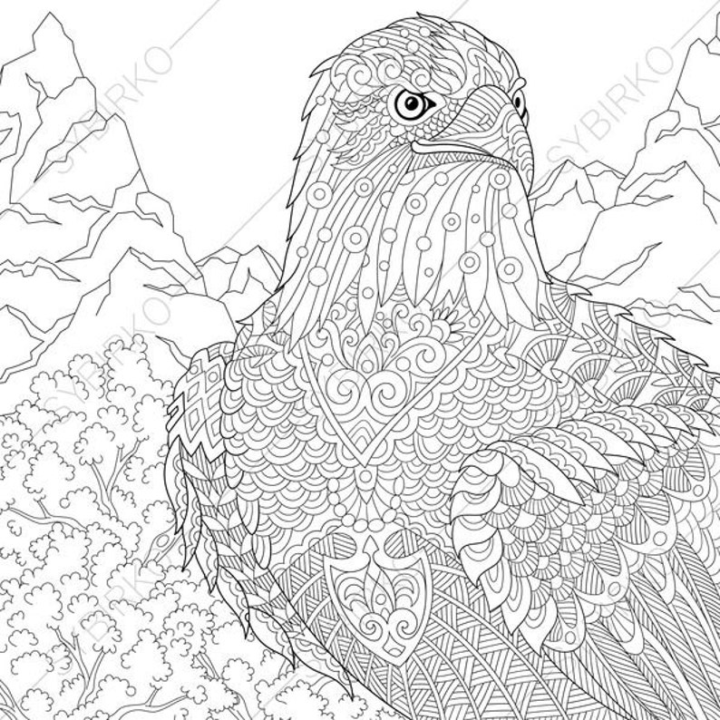 Eagle Hawk Falcon Coloring Pages For Independence Day Etsy