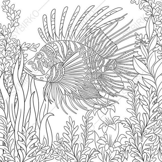 Ocean World Lionfish Zebrafish 3 Coloring Pages Animal