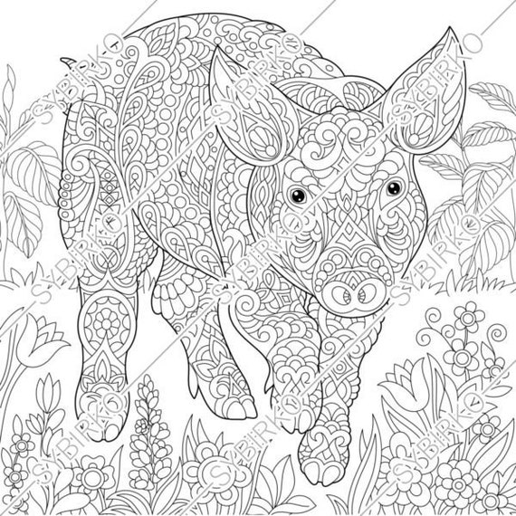 Coloring pages. Pig. Piggy. Piglet. Animal coloring book for adult. Instant  Download. pdf jpg files. Printable coloring pages for adults.