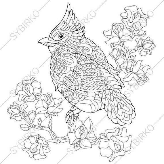 Red Cardinal Bird Coloring Page Animal Coloring Book Pages Etsy