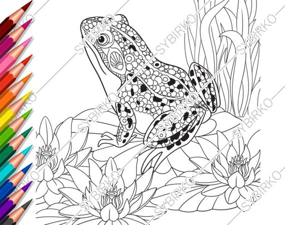 Coloring pages for adults. Frog. Toad. Adult coloring pages. Animal  coloring pages. Digital jpg-pdf coloring page. Instant download print.