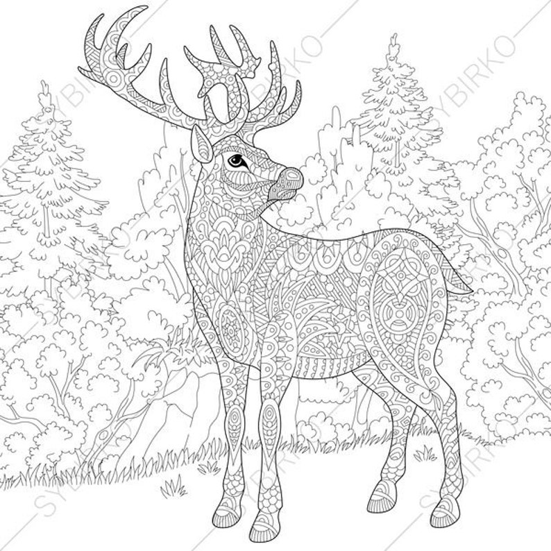 Coloring Pages for adults. Deer. Reindeer. Adult colouring ...