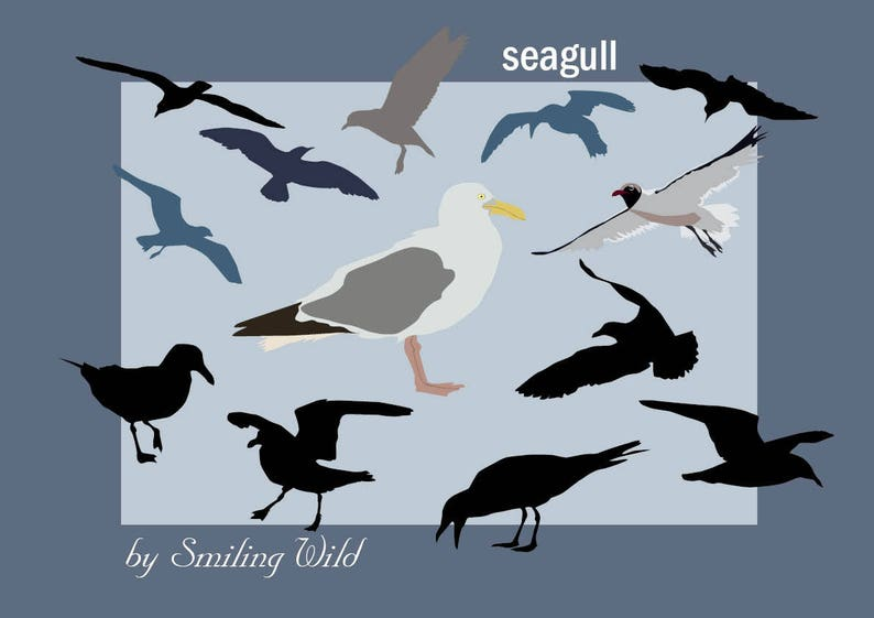 image about Bird Silhouette Printable called seagull svg fowl silhouettes waterfowl clipart printable present downloadable print sea birds Möwe druckfertig vector picture quick down load