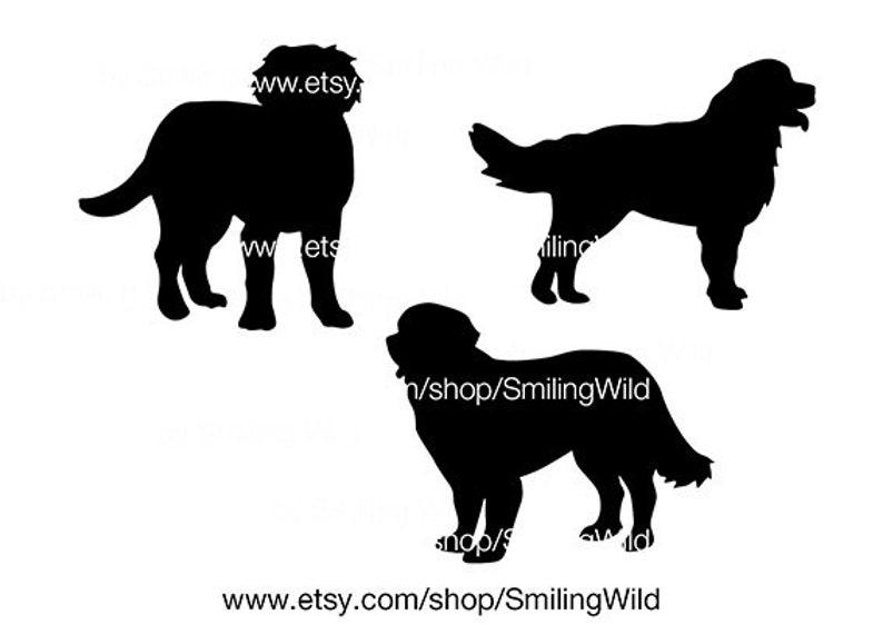 Bernese Mountain Dog silhouette svg cricut cut file walking Bernese Mountain Dog vector graphic art cuttable clipart artwork digital png