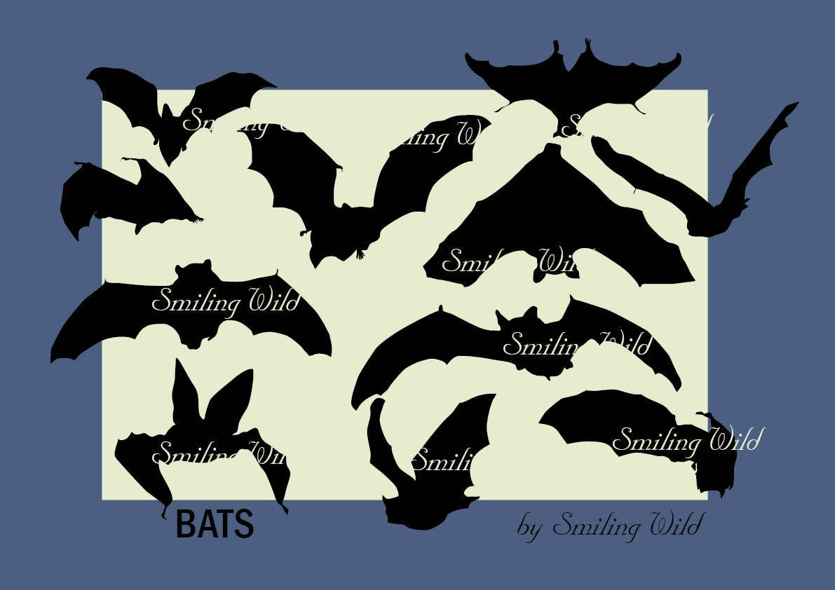 picture about Printable Bats titled bat silhouette oween cutout printable bat svg clipart young children clipart for sbooking collage bat print prompt down load png bat graphic