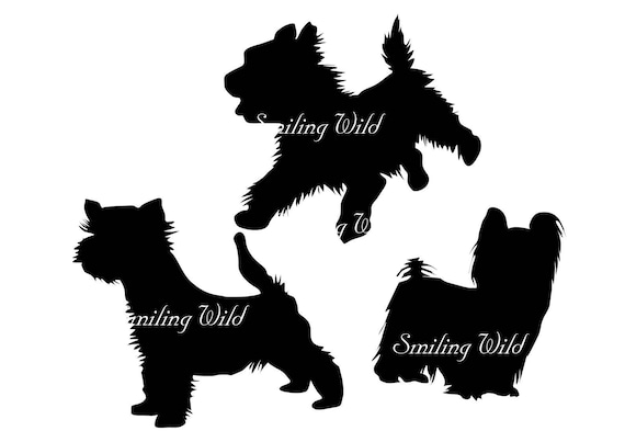 Yorkshire Terrier Svg Yorkie Silhouette Cut File Yorkshire Etsy