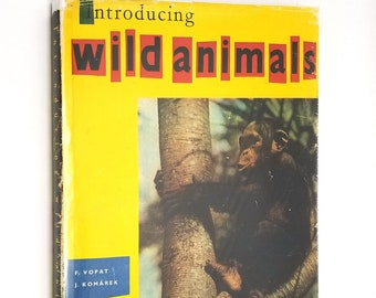 Introducing Wild Animals by Frantsek Vopat & Julius Komarek 1962 Hardcover HC w/ Dust Jacket DJ - Children Non Fiction - Zoology