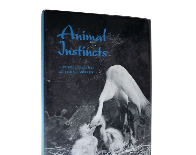 Vintage Children's Non-Fiction: Animal Instincts by Russell Freedman & James Morriss Hardcover HC w/ Dust Jacket DJ 1970 YA Youth