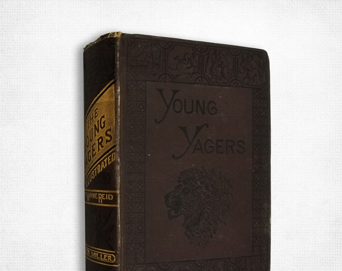 Antique Fiction: The Young Yagers (or A Narrative of Hunting Adventures in Southern Africa) 1881 by Mayne Reid - Hardcover HC YA