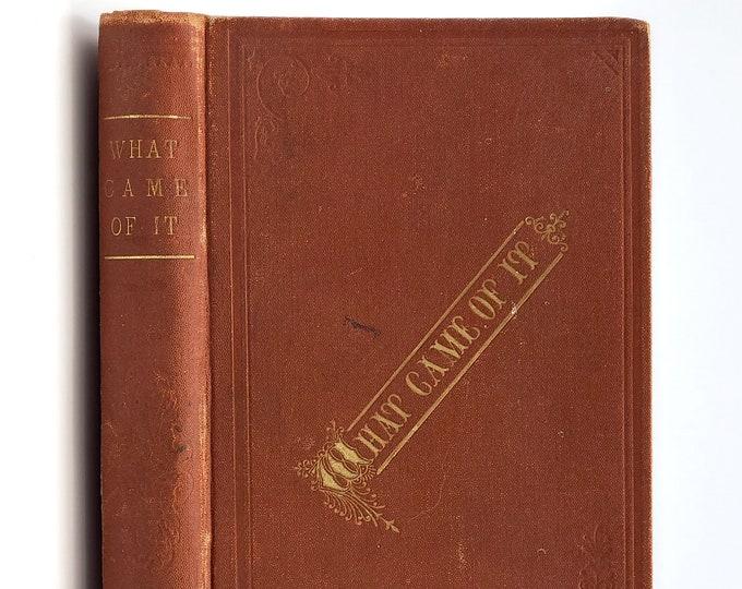 Antique Fiction: What Came of It. A Novel 1878 by Mrs. H.V. Stitzel - Oregon Author - Fiction - Essays