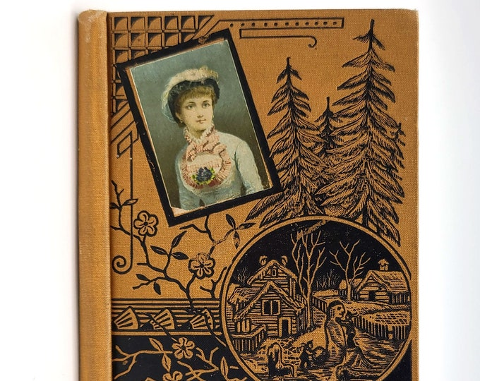 Antique Children's Book: Whose Fault was it? 1881 Learn to Read - Illustrated