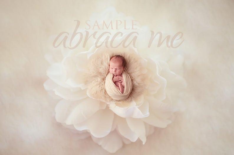 newborn digital background/flower newborn digital image 0