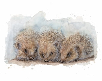 Hedgehog Hedgehog Children Watercolor Art Print
