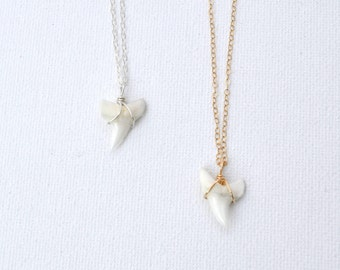 Valeria Necklace // You Are Strong ~ Strength  // Shark Tooth Pendant Necklace // Gold Filled Sterling Silver / Dainty Layering Necklace