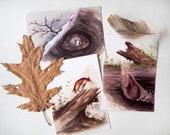 Watercolor painting animals - set of 3 - postcard - print