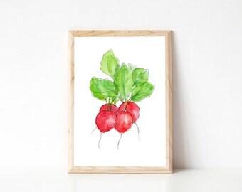 Radishes watercolour print, botanical print, vegetable art, kitchen wall art, botanical home decor, radish drawing, salad art, red art print