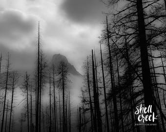 """Through the Mist- 60""""x40"""" limited edition landscape photography print"""
