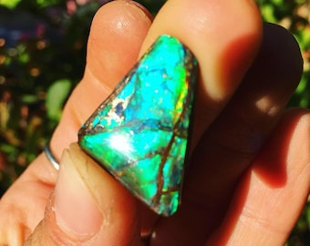 Blue Ammolite Metaphysical Mineral Cabochon Ammonite Opal Canadian Ammolite Gemstone Crystal a healing Jewelry Supplies Fossil Ammolite Cab