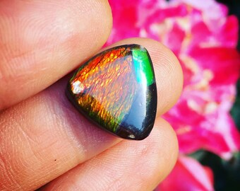 Opal Ammolite Metaphysical Mineral Cabochon Ammonite Opal Canadian Ammolite Gemstone Crystal a healing Jewelry Supplies Fossil Ammolite Cab