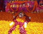 Marigold garlands FROM MEXICO for Day of the dead, Dia de Los Muerto altar. Day of the dead decor ofrenda CALIFORNIA seller