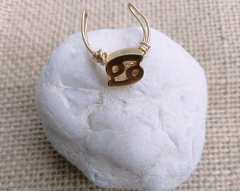 Customizable brass and copper adjustable Zodiac ring