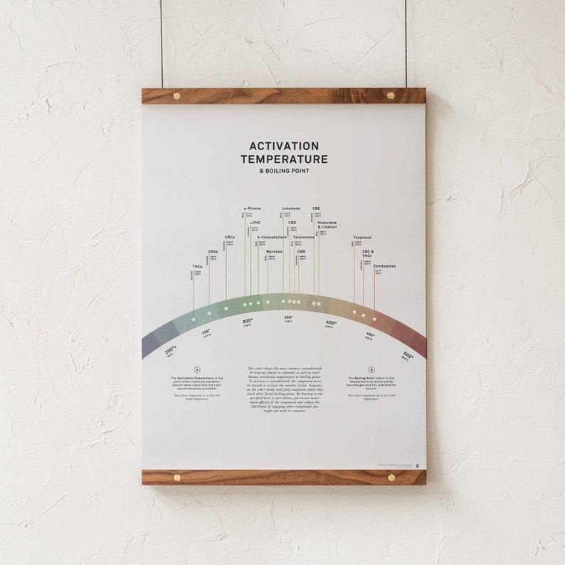 Activation Temperature Chart Art Print Cannabinoid & Terpene image 0