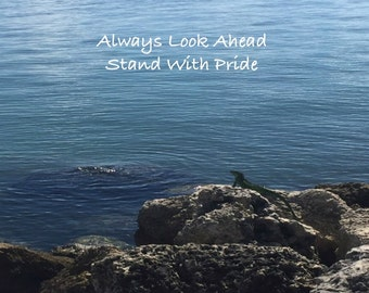 Pride : Photograph / Digital Download / Easy to Print