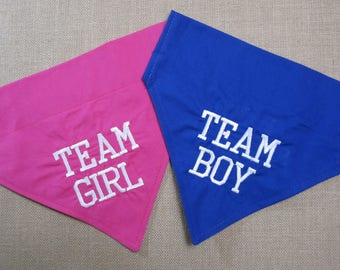 Gender Reveal Dog bandana Team Girl or Team Boy bright pink or blue fabric, New baby announcement, over the collar dog bandana, new baby