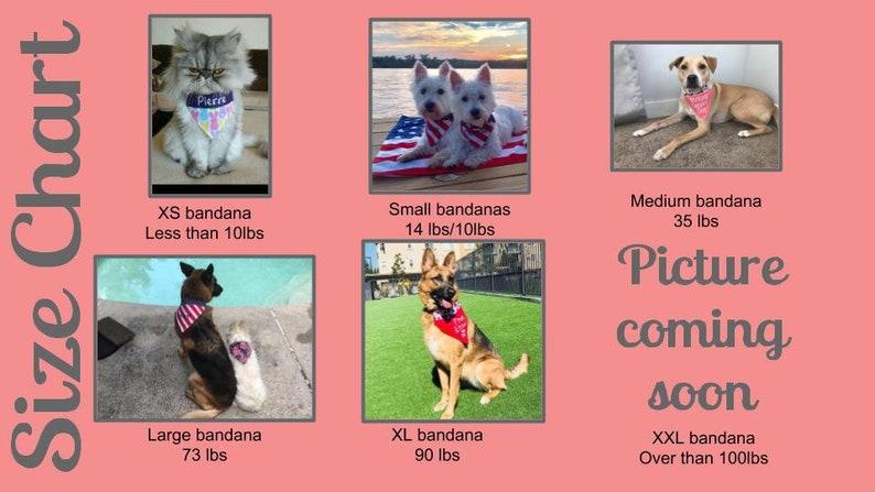 Set of 3 fashion Medium dog slip over the collar dog BandanasNew PuppyDog LoverAnimal lover gift