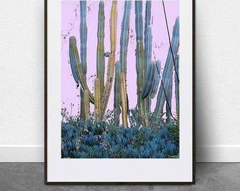Purple Cacti, DIGITAL ART FILE, Printable Art, Cacti Print, Cactus Art, Botanical Art, Plant Art, Wall Art, Digital Download, Garden Art
